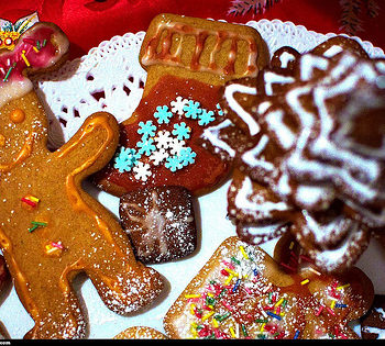 6672151563_759a7b8b44_christmas-cookie