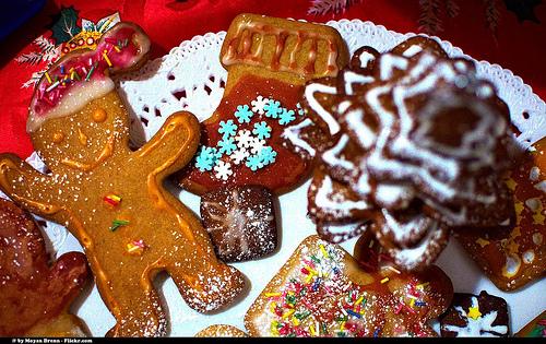 6672151563_759a7b8b44_christmas-cookie