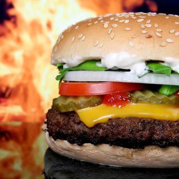 e837b2072af0063ecd0b470de7444e90fe76e6dd1ab6134191f9c6_640_hamburger