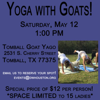 2018 Yoga with Goats 2.jpg